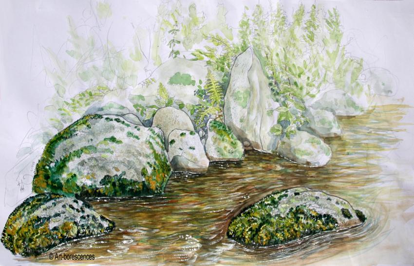 art-borescences_1408_ (9)_watercolor